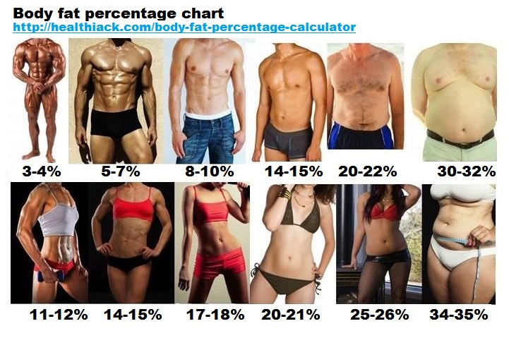 [Image: body-fat-percentage-chart-men-women.jpg]