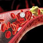 Is cholesterol a good thing or a bad thing?