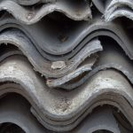 <b>The Health Impact of Environmental Exposure to Asbestos</b>