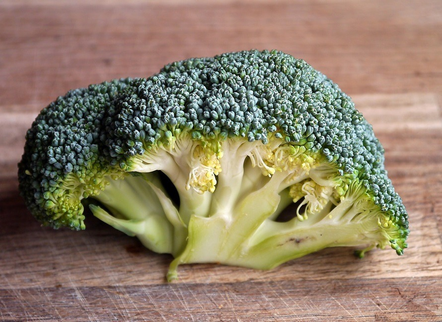 broccoli-vegetable-food