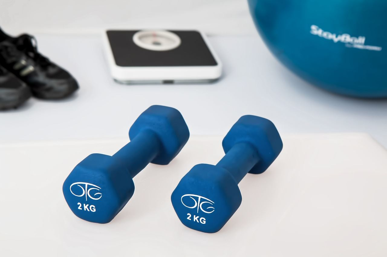 weights-equipment